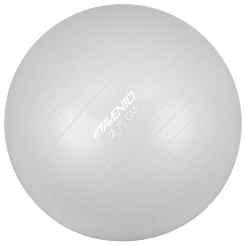 Avento Fitnessbal 75 cm zilverkleurig