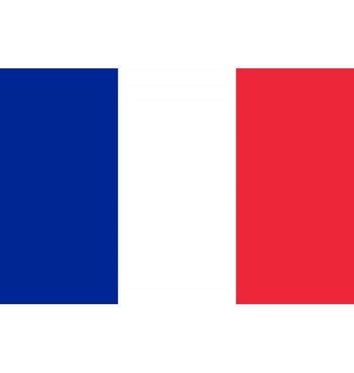 Franse  vlag  (200 x 150 cm)