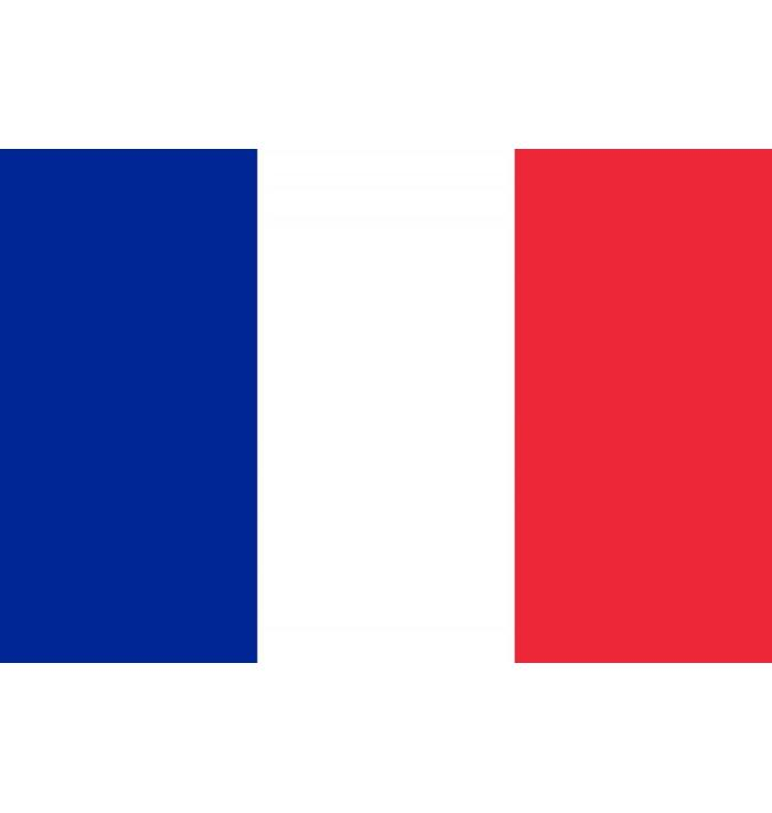 French flag  (200 x 150 cm)