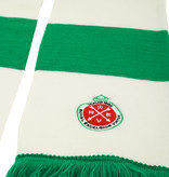 Bar scarf green-white