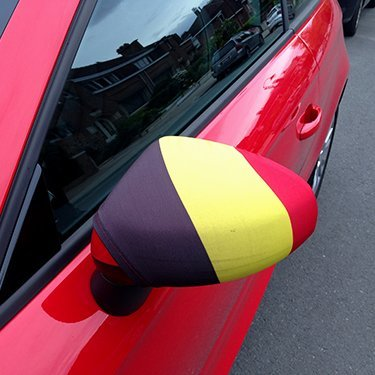 Wing mirror covers (x2)