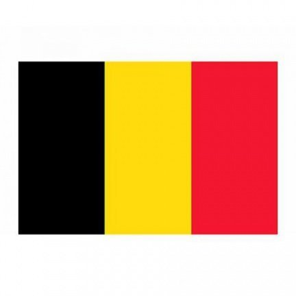 Image result for drapeau belgique