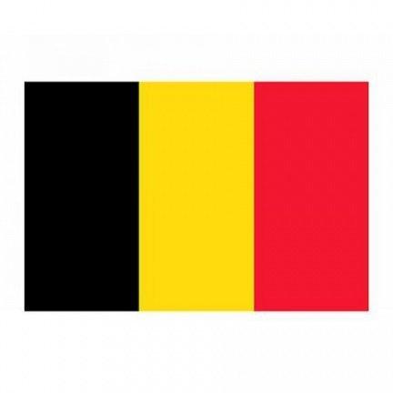 Kleine Belgische vlag