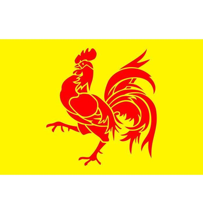 Flag Wallonia