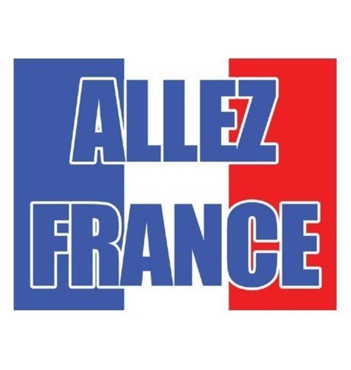 Vlag Allez France