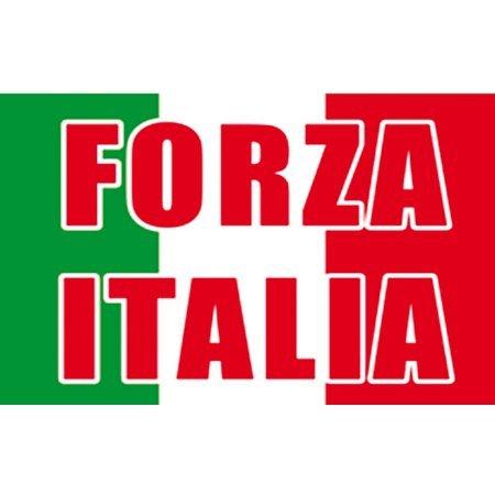 Flag Forza Italia