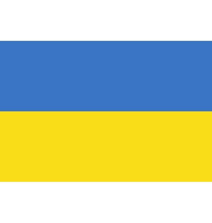Vlag Oekraïne (90/150 cm)