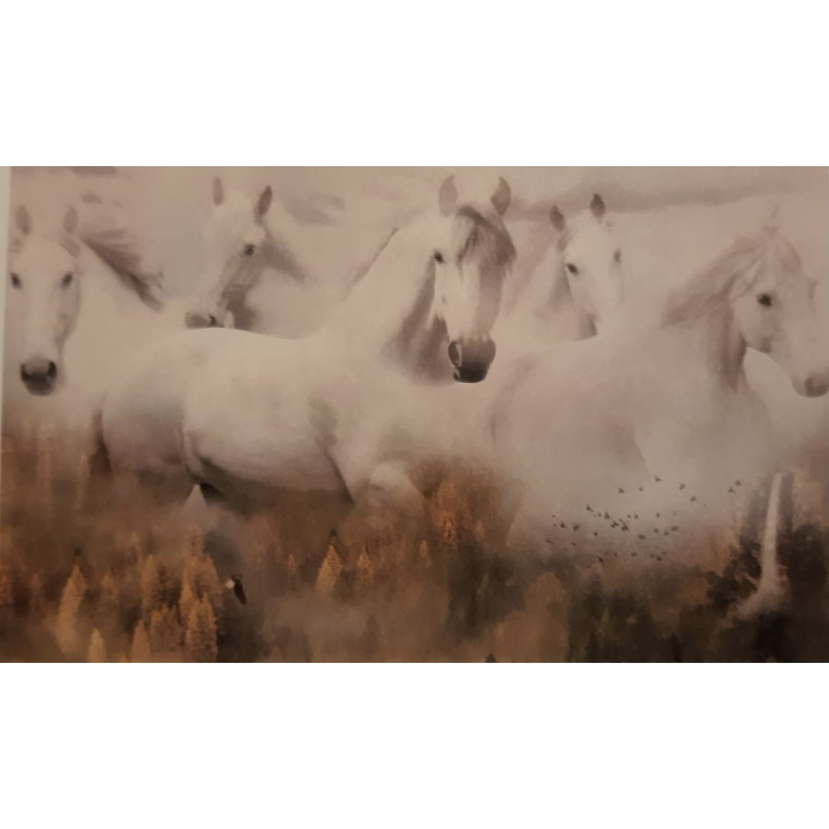 Hoffman Fabrics Call of the Wild - Horses in the Dawn - Panel