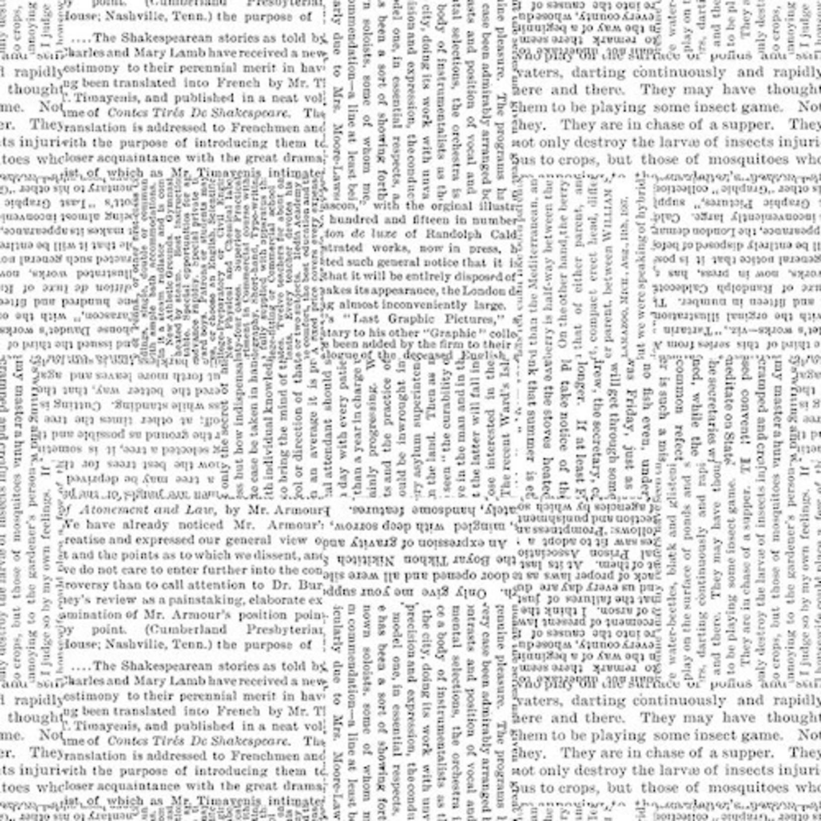Blank Quilting Black Tie - Newspaper