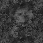 Wilmington Prints Cosmos - Black