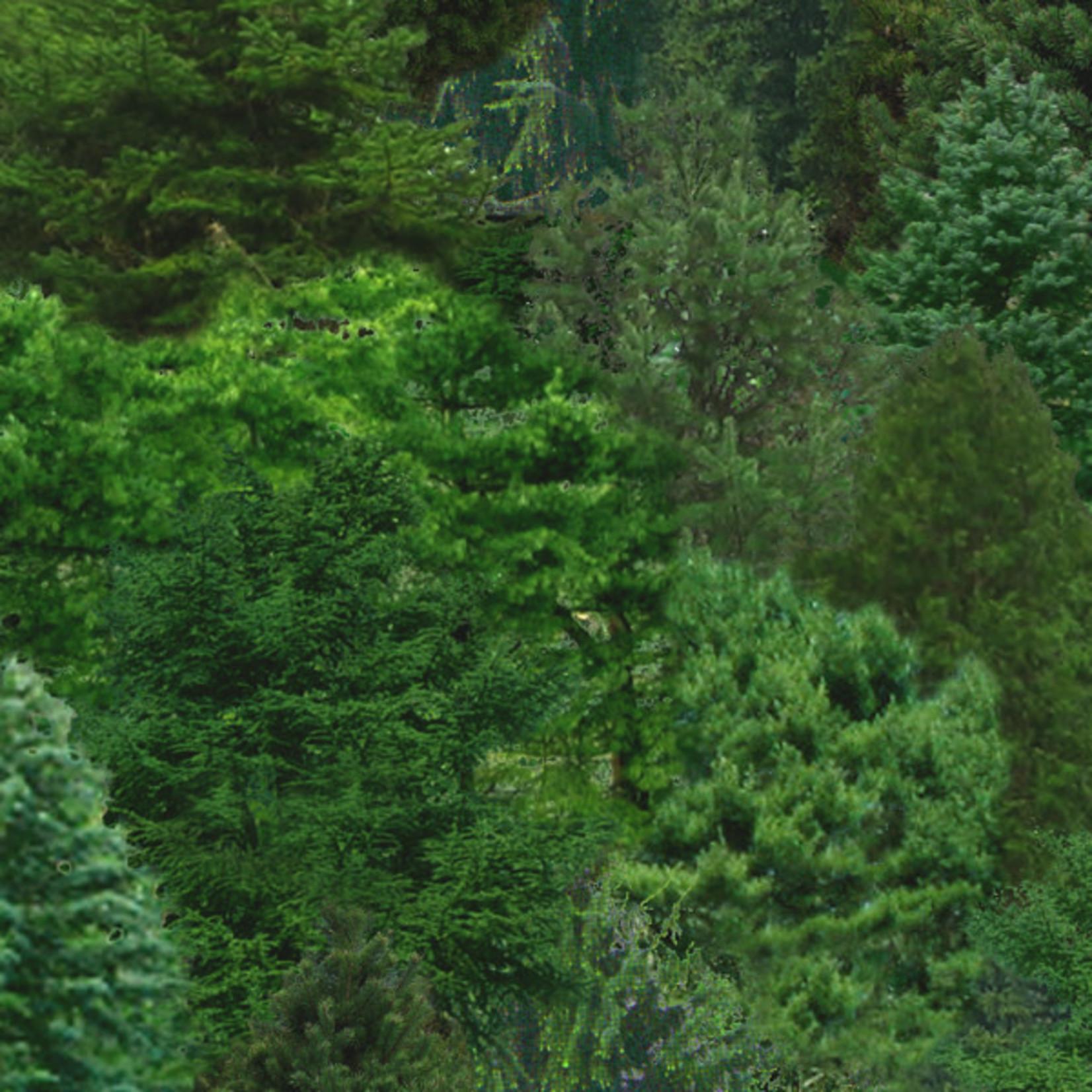 Elizabeth's Studio Landscape Medley - Evergreens Green