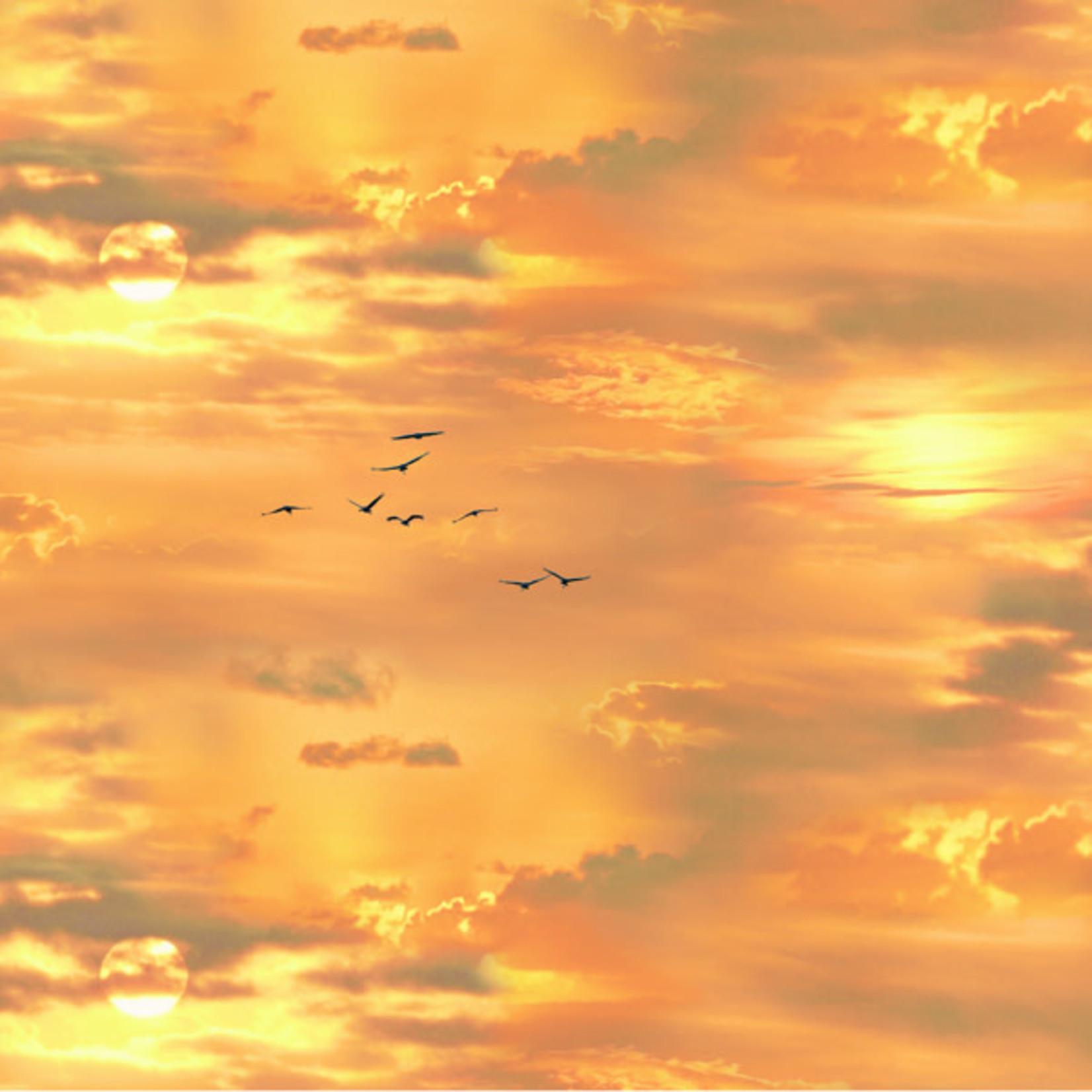 Elizabeth's Studio Landscape Medley - New Sunset Gold