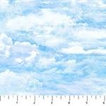 Northcott Stonehenge - Savanna - Clouds
