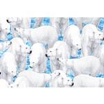 QT Fabrics Northern Lights - Polar Bear - Blue