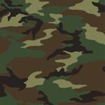 Windham Fabrics Woodland - Camo - Green
