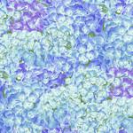 Henry Glass Fabrics Hydrangea Birdsong - Packed Hydrangeas - Blue