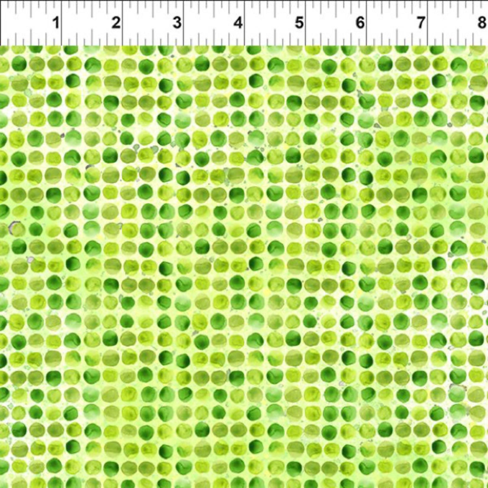 In the Beginning Fabrics Dinosaur Friends - Dots - Green