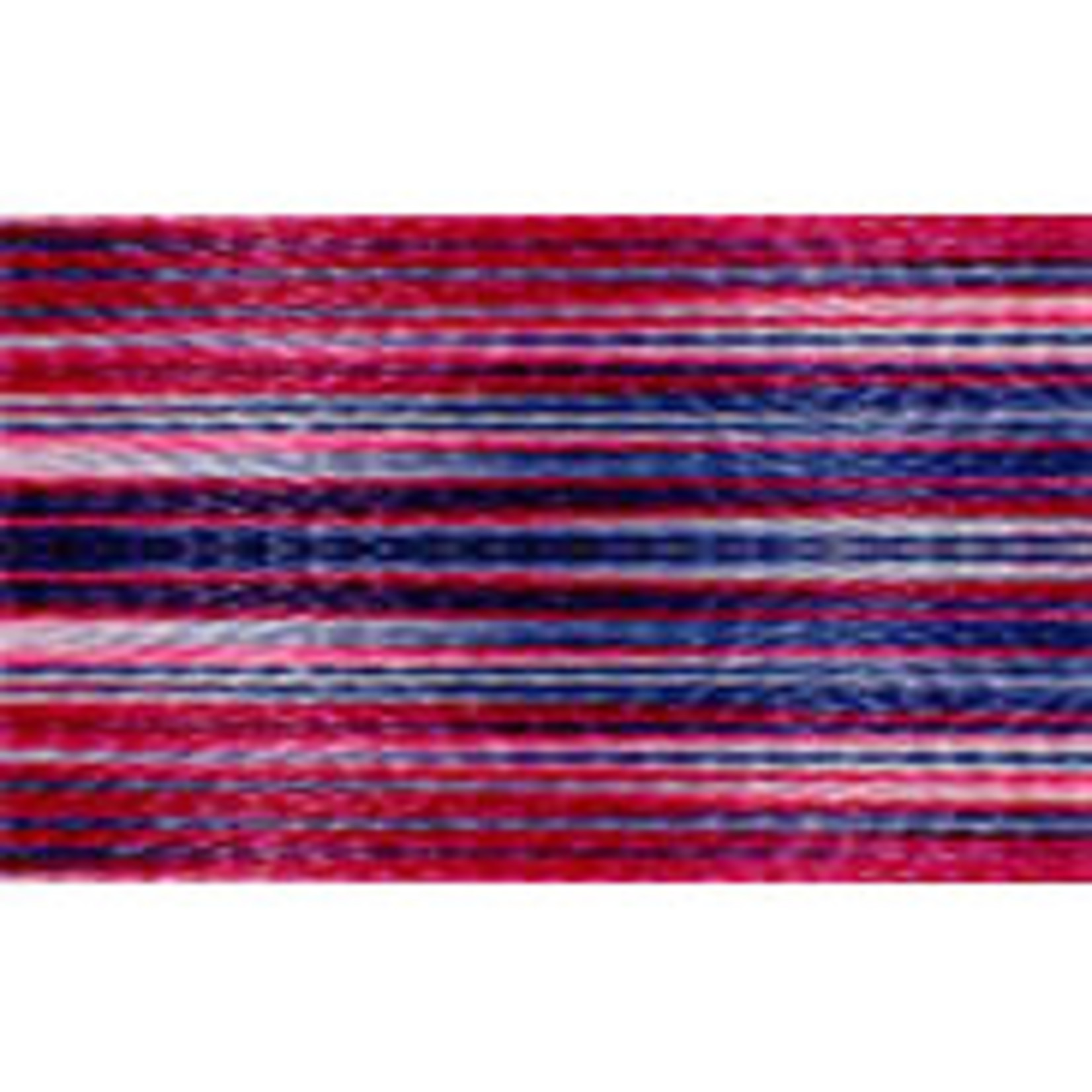 Amann Mettler Isacord Multi - #40 - 1000 m - 9918