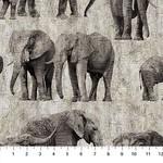 Northcott New Dawn - Elephants - Grey