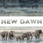 Northcott New Dawn - Elephant Texture - Blue
