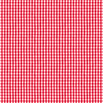 Windham Fabrics Certified Delicious - Mini Gingham - Red
