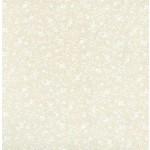Basic Palette Bargains Tone on Tone - 22015TWT - Cream