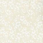 Basic Palette Bargains Tone on Tone - 18606TWT - Cream