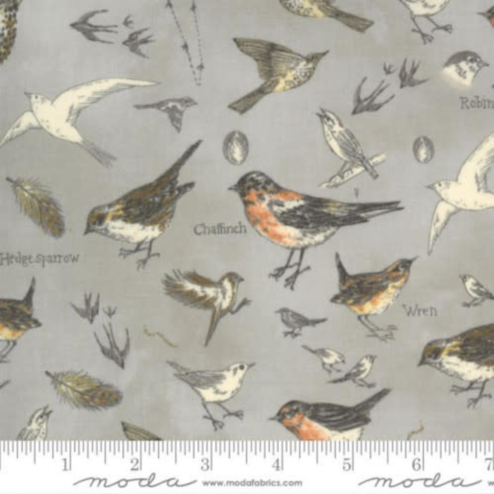Moda Fabrics Janet Clare - Botanicals - Birds - Vintage Grey