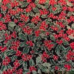 Timeless Treasures Kerst - Holliday - Hulst - Rood Groen Goud