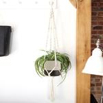 Lisa Angel Macrame Rope Planter Hanger for plant pots