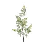 Grand Illusions Fern Leaf 140cm