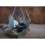 Nkuku MANDURI Glass HANGING PLANTER - ANTIQUE ZINC - SMALL 25.5 X 20CM (DIA)