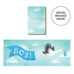 Stormy Knight Beautiful Baby Boy Expanding Card