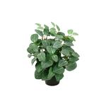 Grand Illusions Fittonia Artificial Plant H 34cm W 25cm 10cm Pot