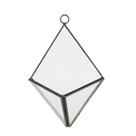 Sass and Belle Black Pyramid Wall Mounted Terrarium