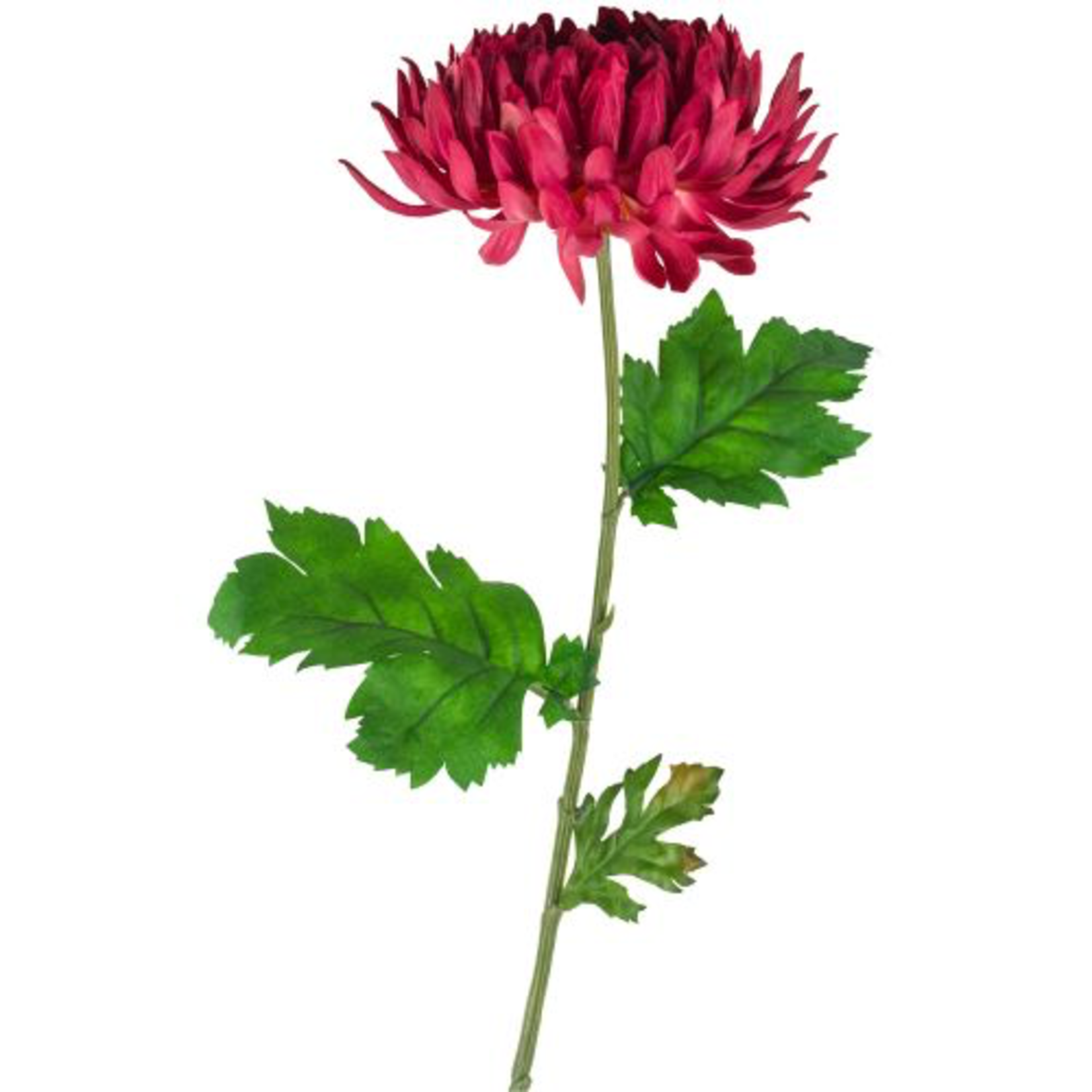 Grand Interiors Chrysanthemum Dark Pink 74cm