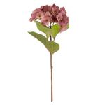 Grand Illusions Hortensia Pink h45cm