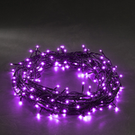 Konstsmide Purple Micro LED Mains Operated Pin Fairy Lights with black wire