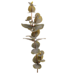 Grand Illusions Eucalyptus Artificial Plant Stem 1x H90cm W12 Approx