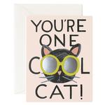 Rifle Rifle CAT - COOL CAT card