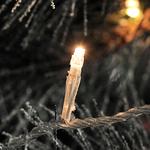 Konstsmide Christmas Lightset Micro LED Mains Operated Fairy Lights