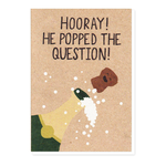 Stormy Knight Popped the Question Card