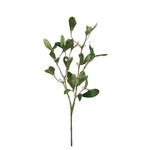 Grand Illusions Mistletoe h60cm