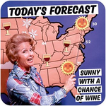 Dean Morris Today's Forecast Coaster