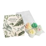 Wild Olive Wild Olive Botanical Bath Melt Gift Set