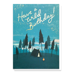 Stormy Knight Have a Wild Birthday Card