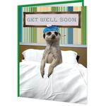 Brainbox Candy Meerkat Get Well Soon Card