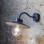 GT Swan Neck Light- Charcoal - Indoor and Outdoor