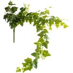 Grand Illusions Ivy Trailing 90cm