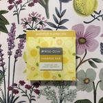 Wild Olive Wild Olive Grapefruit and Green Tea Shampoo Bar